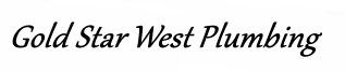 Gold Star West Plumbing Houston Logo